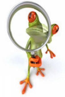 Frog with looking glass